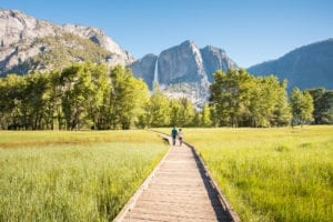 Cook's Meadow in Yosemite Valley with a view of Yosemite Falls